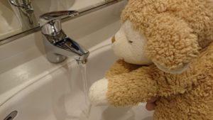 ひつじの手洗い